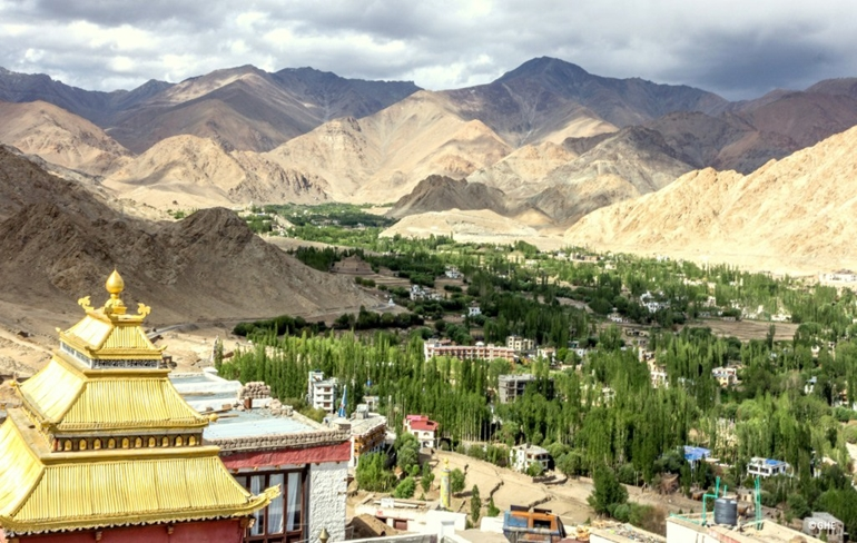 Arrive in Leh, Acclimatize_Day 1